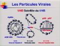 Communication Présentée par Pr.Emmanuel GORDIEN, Service de Bactériologie, Virologie-Hygiène, Hôpitaux Universitaire de Paris Seine Saint Denis
