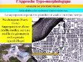 Cours de 3ème année architecture, intitulé L'apporoche typo-morphologique, Animé par Mr ATTAR (4-4)