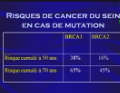 Oncogénétique et cancer du sein