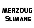 Communication présentée par Mr. MERZOUG Slimane