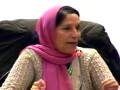 – محاضرة  : أ د فلة القشاعي