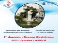Ouverture de la 1ère journée Scientifique des Gynécologues et Omnipraticiens, 15 ème journée : AMGLB