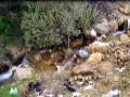 Thème: Hygiène du Milieu au Niveau de la Wilaya de BEJAIA